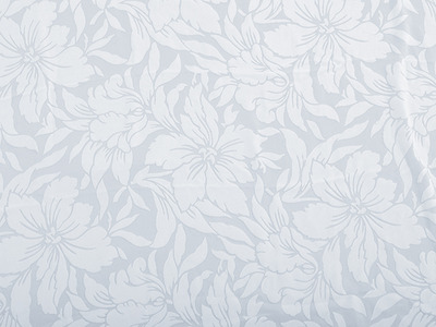 AMELIA SILK BURNOUT ANTIQUE WHITE